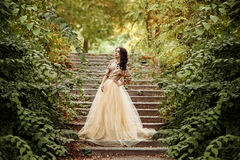 Beautiful girl in a gold, luxurious dress stock images