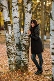 Beautiful Girl in Golden Autumn Leaves Park Hugging Tree. Relax. Royalty Free Stock Image