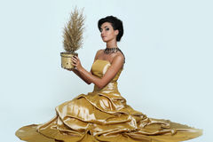 Beautiful girl in golden dress Royalty Free Stock Images