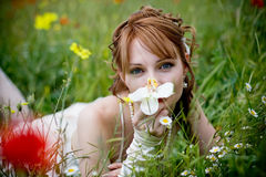 Beautiful girl in grass Stock Image
