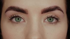 Beautiful girl with green eyes stock footage