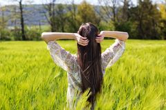 Beautiful girl at the green field of rye Royalty Free Stock Photo