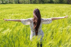 Beautiful girl at the green field of rye Royalty Free Stock Photography