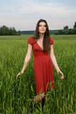 Beautiful girl in green wheat field Stock Photo