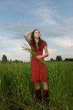 Beautiful girl in green wheat field Royalty Free Stock Photos