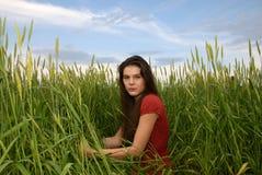 Beautiful girl in green wheat field. Beautiful girl weared red dress in green wheat field Royalty Free Stock Image