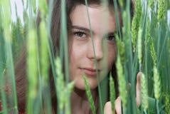 Beautiful girl in green wheat field. Beautiful girl in green field of wheat Royalty Free Stock Photo