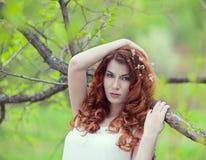 beautiful girl haired portrait red Στοκ Εικόνα