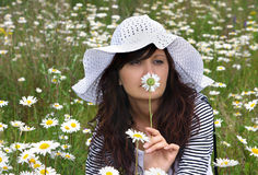 Beautiful girl in hat with camomile Royalty Free Stock Images