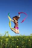 Beautiful girl having fun on the field Royalty Free Stock Photography