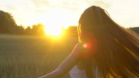 Beautiful girl having fun on wheat field in sunset. Freedom, health, happiness concept. Happy young woman in field. Beauty girl with long hair enjoying nature stock video