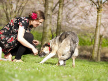 Beautiful girl having petting her dog during a walk in the spring stock image