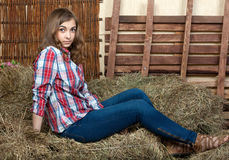 Beautiful girl in the hay Stock Photography