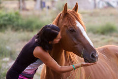 Beautiful girl and her handsome horse Royalty Free Stock Photography
