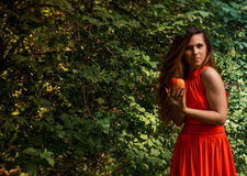 Beautiful girl holding apple in the park Royalty Free Stock Photos