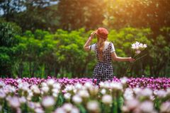 Beautiful girl holding bouquet flowers .Portrait in nature field.  Royalty Free Stock Image