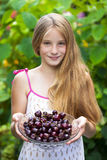 Beautiful girl holding a bowl of cherries in the garden Royalty Free Stock Images