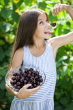 Beautiful girl holding a bowl of cherries in the garden Stock Photography