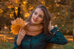 Beautiful girl holding a fall leaves and looks toward close-up Stock Images