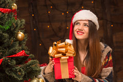 Beautiful girl holding a present near New Year tree Royalty Free Stock Image