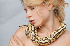 Beautiful girl  holding a python, which wraps Royalty Free Stock Images