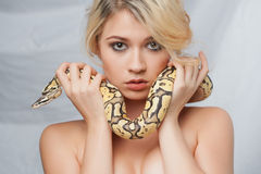 Beautiful girl  holding a python, which wraps Stock Photos