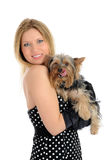 Beautiful girl holding small cute york terrier dog Stock Images