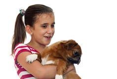 Beautiful girl holding a small pekingese dog Royalty Free Stock Image