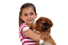 Beautiful girl holding a small pekingese dog Stock Photos