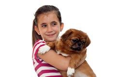 Beautiful girl holding a small pekingese dog Stock Photos