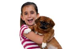 Beautiful girl holding a small pekingese dog Royalty Free Stock Photos