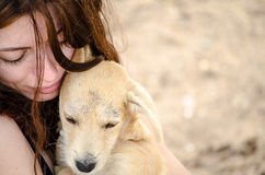 Beautiful girl holding a small stray dog in her ar. Beautiful girl on the beach, holding a small stray dog in her arms and smiling stock photos
