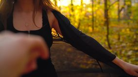 Beautiful girl holds the hand of her boyfriend and follows him through the yellow autumn forest. Slow motion. Weekend outside the city stock footage