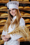 Beautiful girl holds in hands ears of wheat. Pretty blonde girl holds in hands ears of wheat on background bakery Royalty Free Stock Images