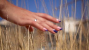 Beautiful girl holds her hand over the tall grass stock video