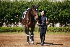 beautiful girl horse στοκ φωτογραφία με δικαίωμα ελεύθερης χρήσης