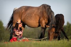 Beautiful girl with horses at sunset Royalty Free Stock Photo