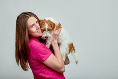 Beautiful girl hugging a dog by Jack Russell terrier on hands on gray background, copy space, Green Peace cocept.  royalty free stock photography