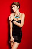 Beautiful girl with jewelry and  clutch bag Royalty Free Stock Image
