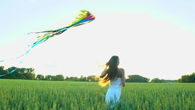 Beautiful girl with kite flying in wind running on wheat field in sunset. Freedom beayty health happiness concept. Happy. Young woman in field with long hair in stock video
