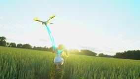 Beautiful girl with kite flying in wind running on wheat field in sunset. Freedom beayty health happiness concept. Happy. Young woman in field with long hair in stock footage