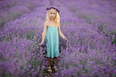 Beautiful girl on the lavender field royalty free stock photography