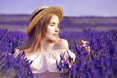 Beautiful girl on the lavender field. Beautiful woman in the lavender field on sunset. Soft focus. Provence, France. A girl in pin. K dress and hat walking royalty free stock image