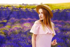 Beautiful girl on the lavender field. Beautiful woman in the lavender field on sunset. Soft focus. Provence, France. A girl in pin. K dress and hat walking royalty free stock photo