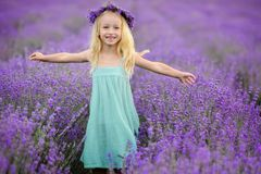 Beautiful girl on the lavender field royalty free stock image