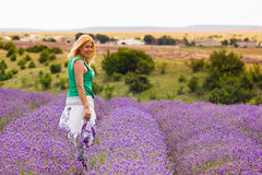 Beautiful girl on lavender field Stock Image