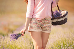 Beautiful girl on the lavender field. Royalty Free Stock Images