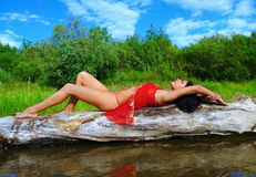 The beautiful girl lays on a tree Royalty Free Stock Photography