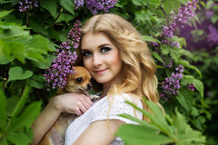 Beautiful girl with lilac flowers and her chuhuahua dog Royalty Free Stock Images