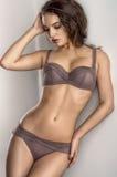 Beautiful girl in lingerie Stock Image